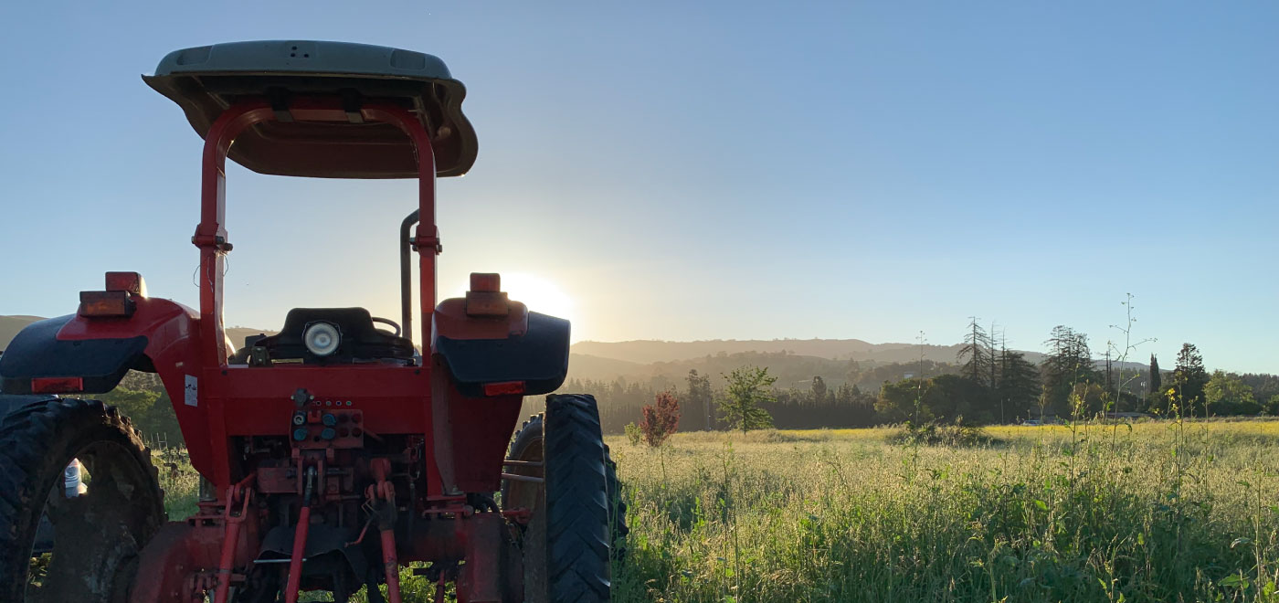 A tractor sitting in a field at sunrise.